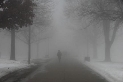 fog-02