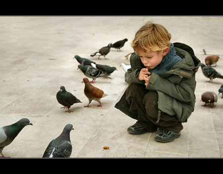 Patience-boy-with-pigeons