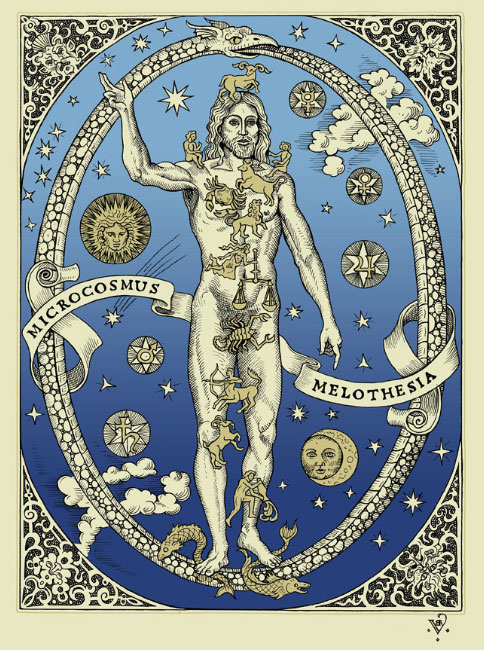 Microcosmos Melothesia by Benjamin A. Vierling